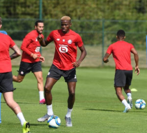 Lille sweats over Osimhen's Injury… He's Also a Doubt for Next Month's 2021 AFCON qualifiers