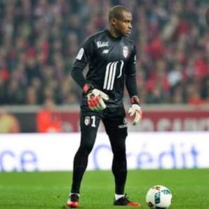 Vincent Enyeama earns praise from Brazilian forward